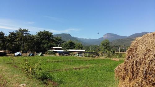 Chomthong Farmstay and Camping จอมทองฟาร์มสเตย์ แอนด์ แค้มปิ้ง