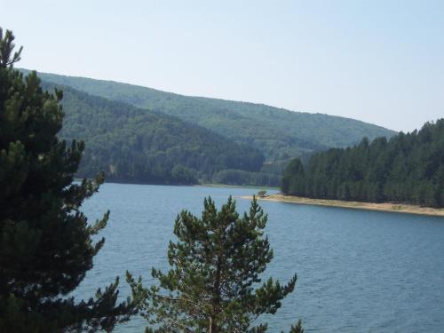 Lago Sila Lorica Calabria - Apartment - Lorica