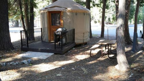 Snowflower Camping Resort 12 Ft. Yurt 9
