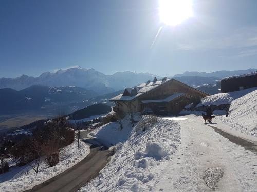 La Joubarbe au Balcon du Mont-Blanc - Chalet - Cordon