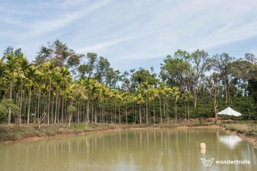 Turtle Pond - A Wandertrails Showcase in India