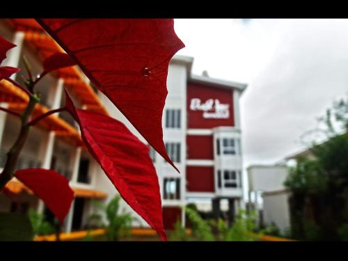 . Hotel Casa Royale
