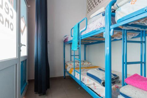 Bedcelona Gracia Hostel photo 28