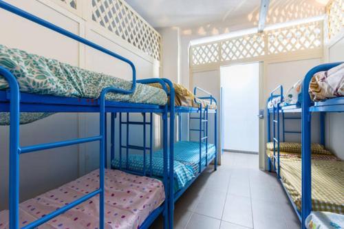 Bedcelona Gracia Hostel photo 29