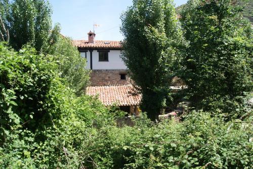 Four-Bedroom House Casa Tio Conejo 19