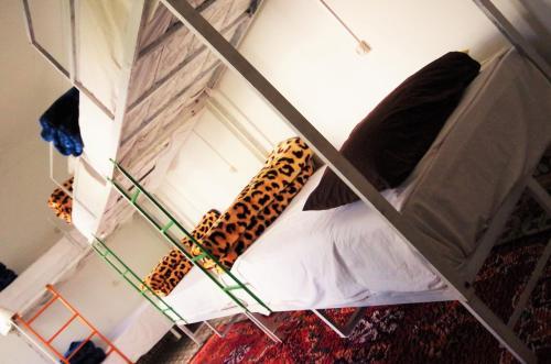 The Madrassa