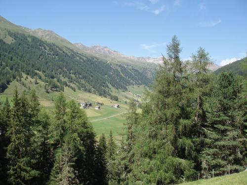 Rieglhof - Accommodation - Curon Venosta