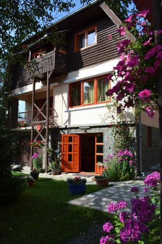 Casa Camelia - Hotel - Sovata