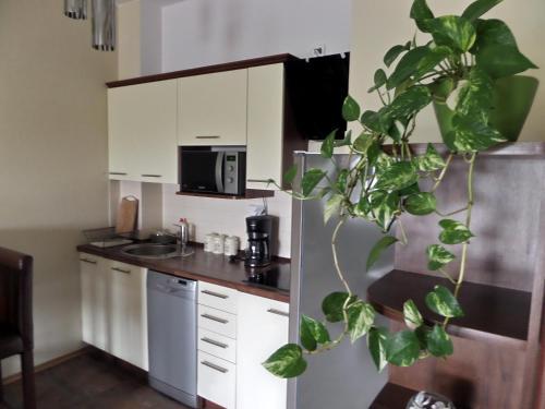 . Apartamenty Silver Premium