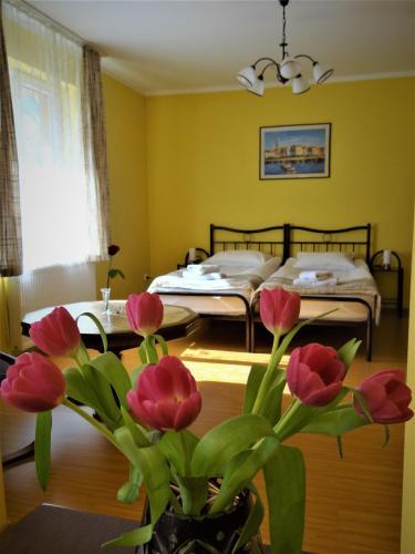 HotelGarden Apartment