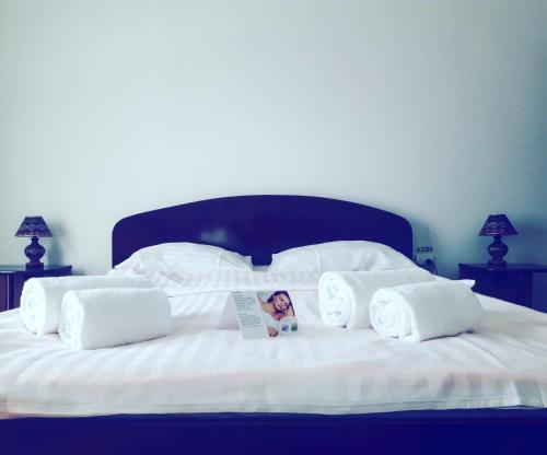 HotelPensiunea Carina