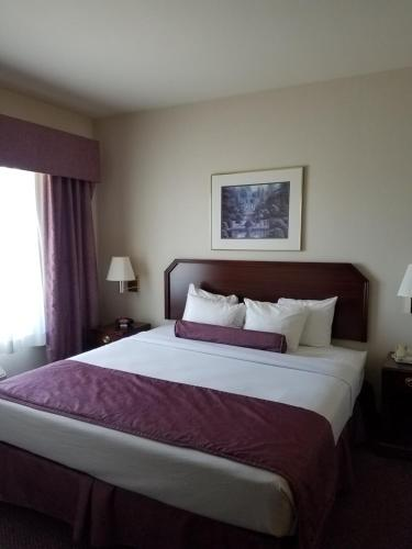 Ashmore Inn and Suites Amarillo King Room