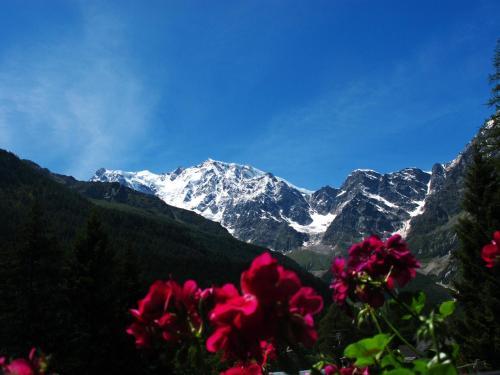 Casa Alpina Don Guanella - Accommodation - Macugnaga