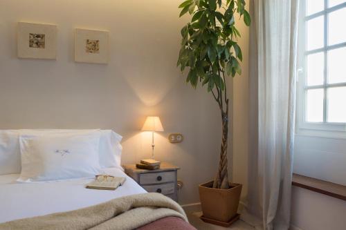 Superior Doppel- oder Zweibettzimmer Jardí de Ses Bruixes Boutique Hotel 46