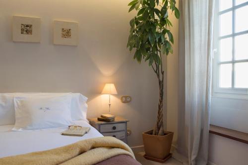 Superior Doppel- oder Zweibettzimmer Jardí de Ses Bruixes Boutique Hotel 44
