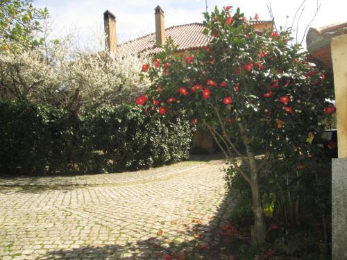 Quinta Do Prado - Photo 6 of 49