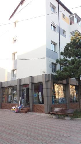 . Casa Stoika - City Center