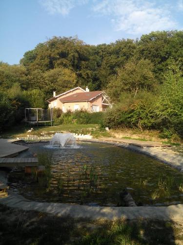 Le Jardin Ombragé - Accommodation - Saint-Paul-d'Izeaux