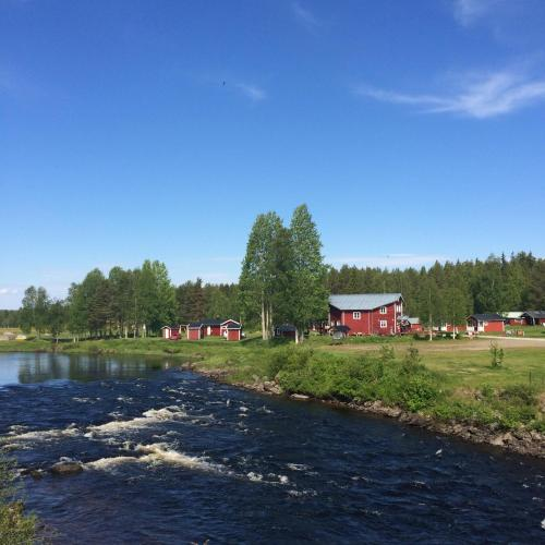 Hotel-overnachting met je hond in Fällfors Camping - Fällfors