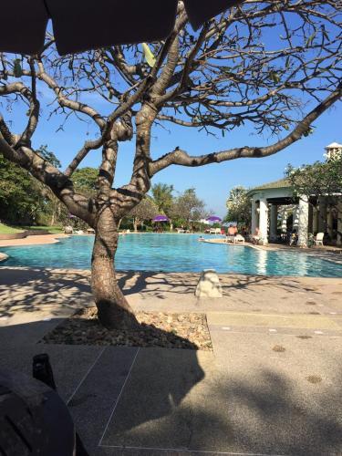 Hua Hin Palm Hills Golf Resort Hua Hin Palm Hills Golf Resort
