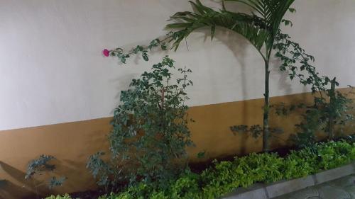 Фото отеля Residence La Roseline