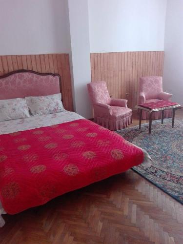HotelAlfredo Hostel