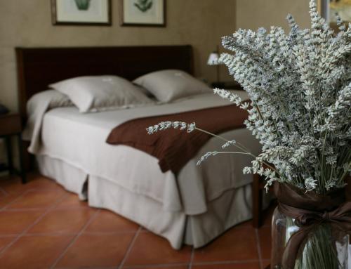 Habitación Doble - 1 o 2 camas Bremon 12