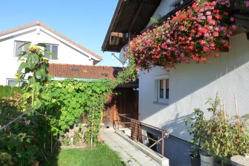 Ferienwohnung Alpenblick - Apartment - Ainring