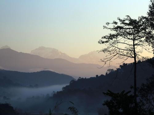 Ward No. 25, Chisapani, Pokhara 33700, Nepal.