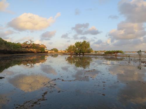 Blue Monkey Beach Cottages, Lungalunga