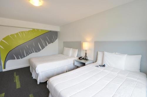 Hotel Miramar room photos