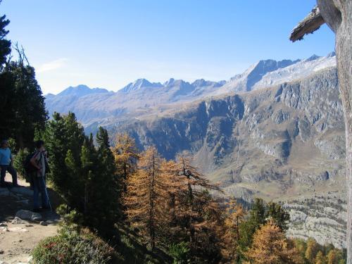 Alphütte Bielerhüs - Chalet - Fiesch