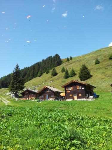 Alphütte Bielerchäller - Apartment - Fiesch