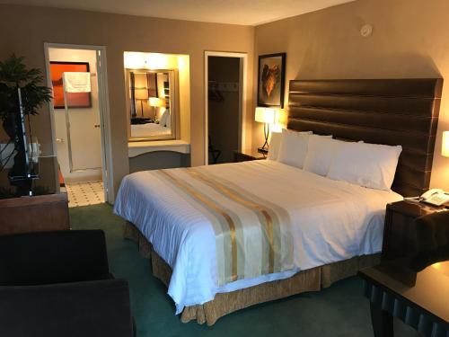 Фото отеля Discovery Inn