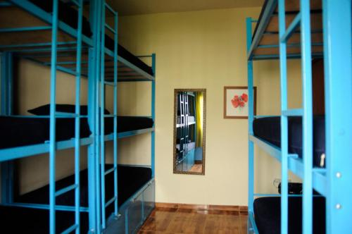 Bed in Female 6-Bed Dormitory Ensuite