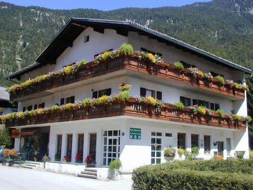 Haus Alpenrose - Accommodation - Obertraun/Dachstein
