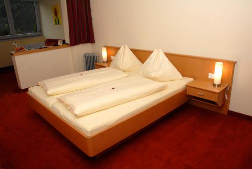 Фото отеля Hotel Sonnenheim
