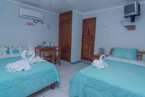 HotelHostal Leon Dormido
