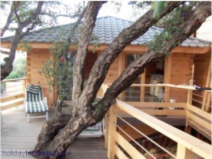 Albaria Lodge - Location saisonnière - Saint-Florent
