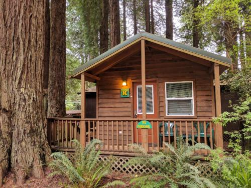 Фото отеля Emerald Forest Cabins