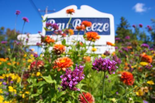 . Bay Breeze Resort