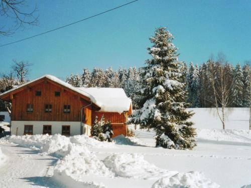 . Lovely Holiday Home in Viechtach near the Forest