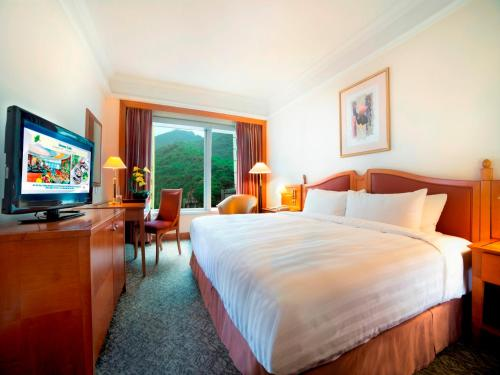 Superior Double or Twin Room with City View (Triple Occupancy)