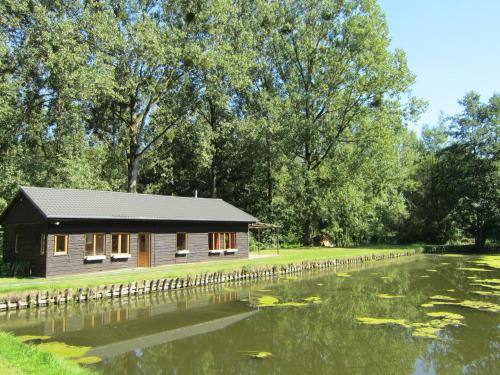 . Beautiful Holiday Home in Braibant near Ciney Town Center