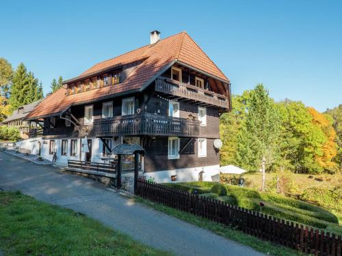 . Spacious Apartment in Dachsberg Black Forest near Ski Area