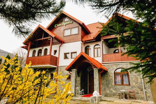 Casa Natalia Boutique Villa - Sinaia