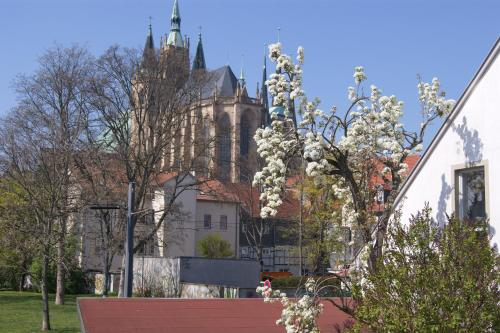 Hotel Hotelpension Am Dom