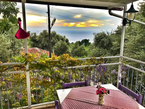 Faralya Butterfly Guest House contact