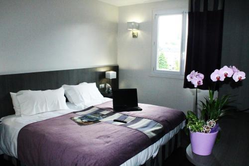 Hôtel des Rosiers - Hôtel - Lourdes