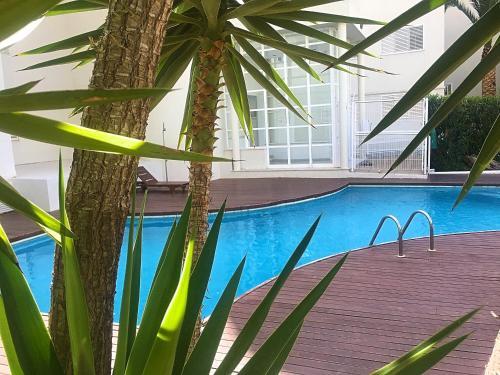 HotelGifsa Marina Botafoch Garden